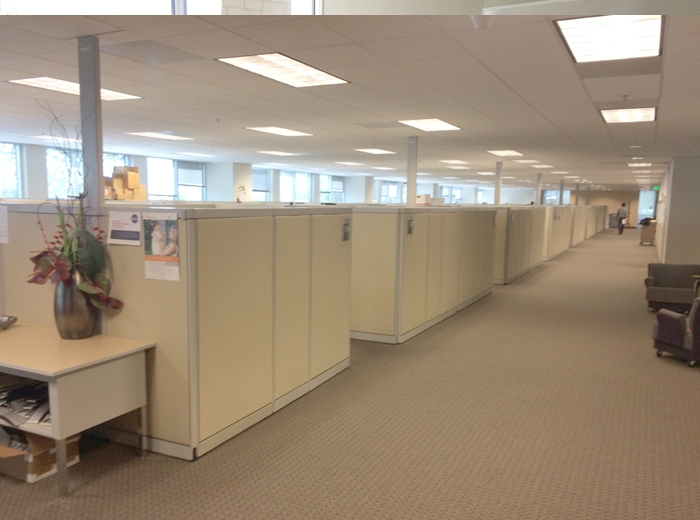 77 STEELCASE CUBICLES